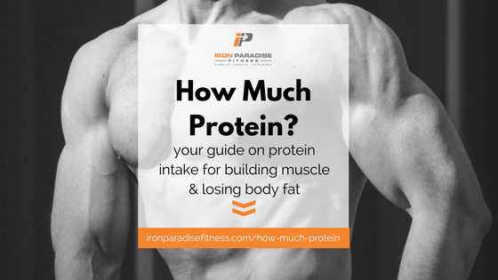 How Much Protein Blog Cover Pic