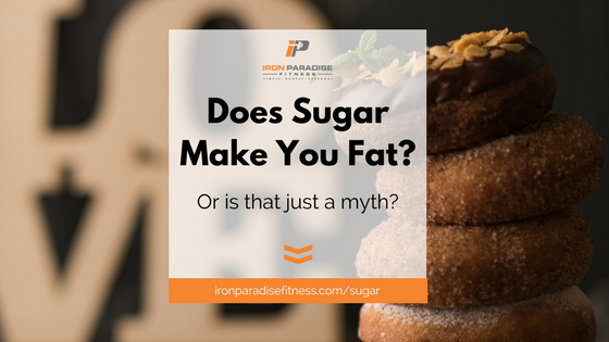 Does Sugar Make You Fat- Blog Pic