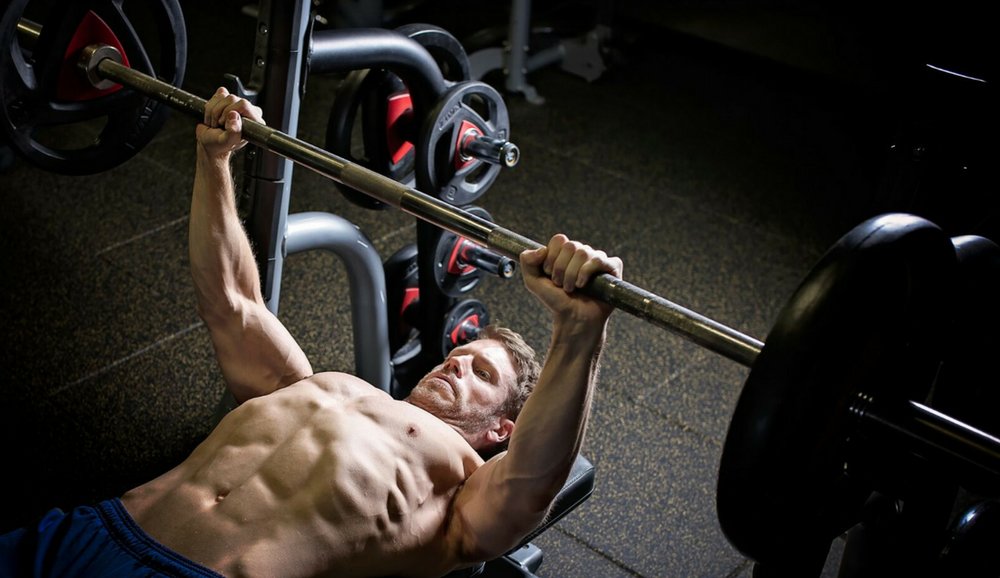 Bench Press Stubborn Body Part Article