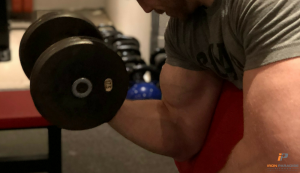 mind-muscle connection iron paradise fitness Groups article iron paradise fitness