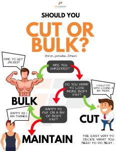 Should You Cut Or Bulk Decision Tree Iron Paradise Fitness