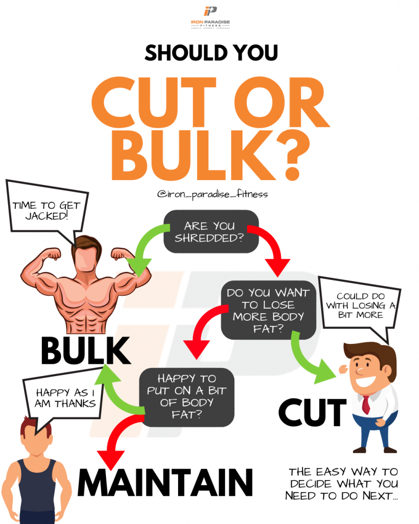 Should You Cut Or Bulk Decision Tree Iron Paradise Fitness