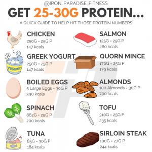 Jedi Workout Protein Sources Iron Paradise Fitness
