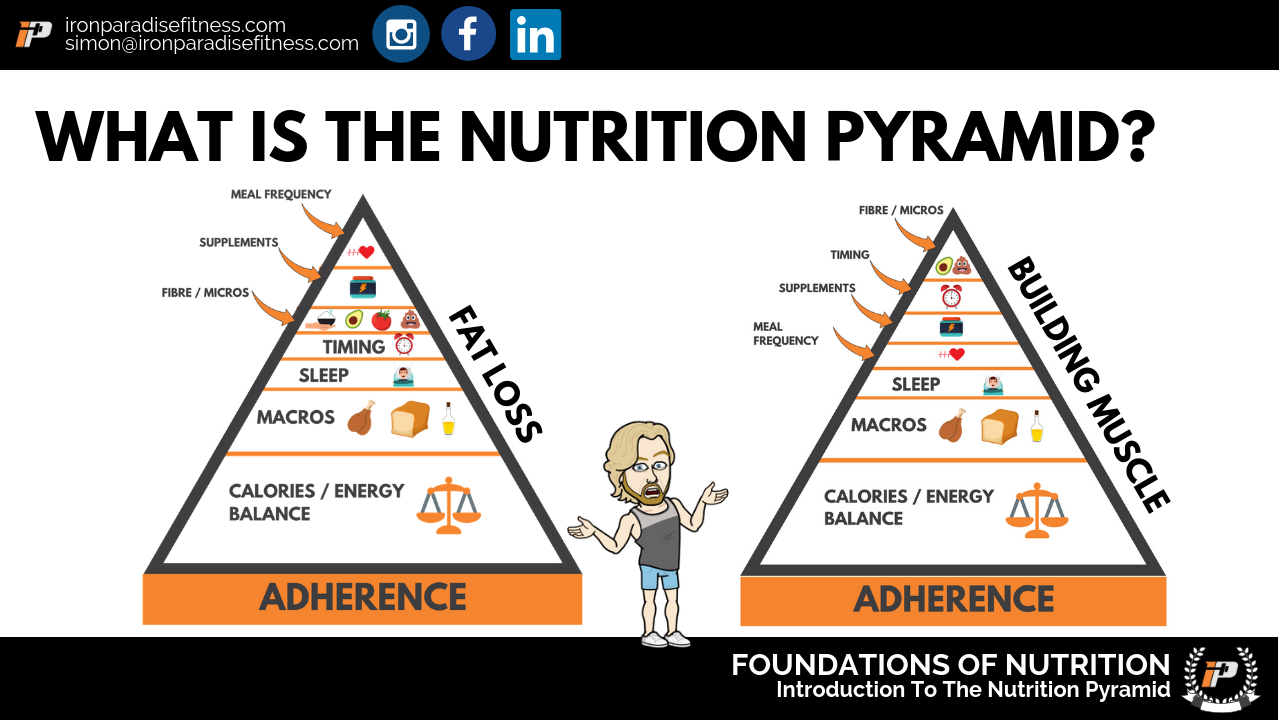 Nutrition Pyramid Iron Paradise Fitness