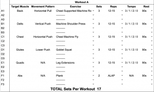 Jedi Workout Iron Paradise Fitness