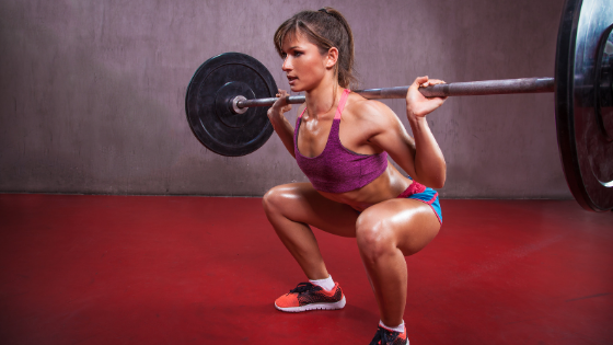 Push Pull Legs Training Split Iron Paradise Fitness