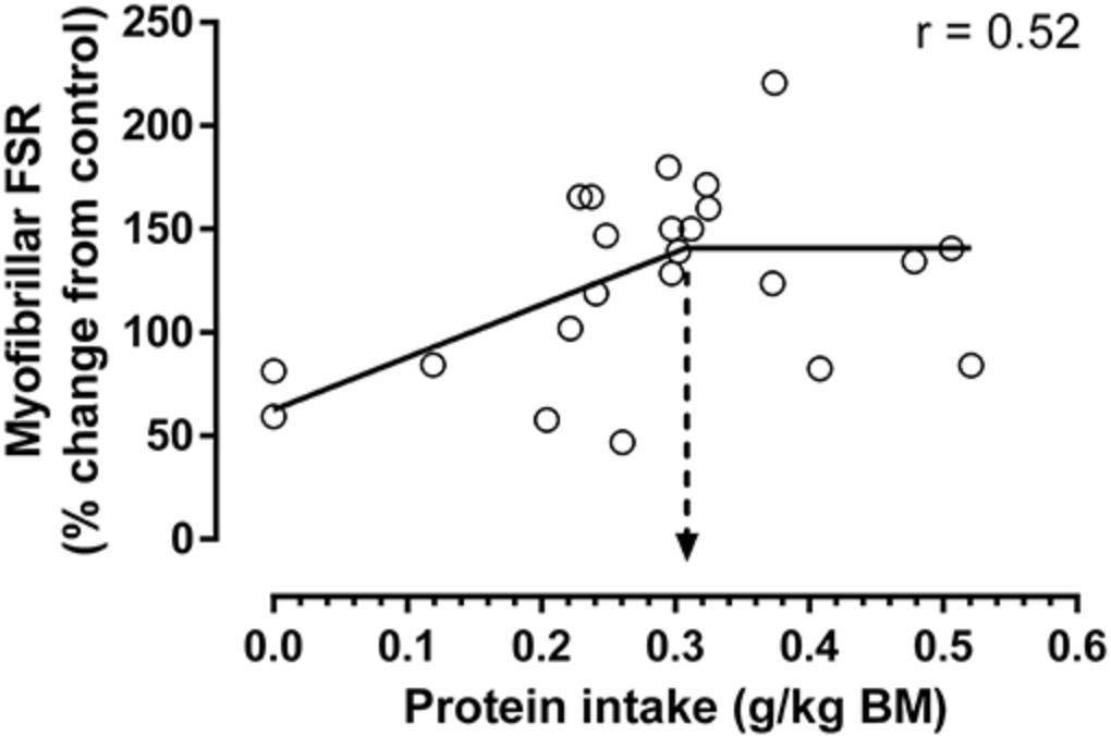 Post-exercise protein intake